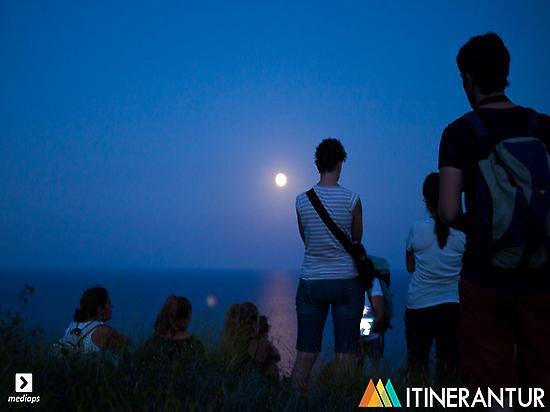 Sierra de irta, nocturnal and wild