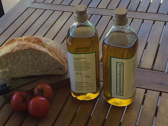 Our virgin extra olive oil. Our gold
