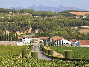 Segura Viudas' surroundings
