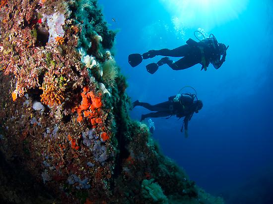 Enjoy diving in Mallorca