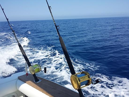 Disfruta de un día de pesca