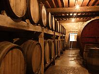 Tour of the Galician wine denominations
