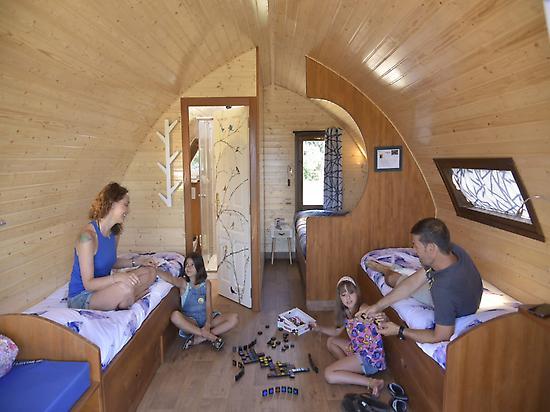 Treetop cabin with bathroom