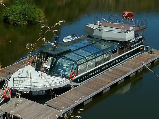 Cruise ship activity