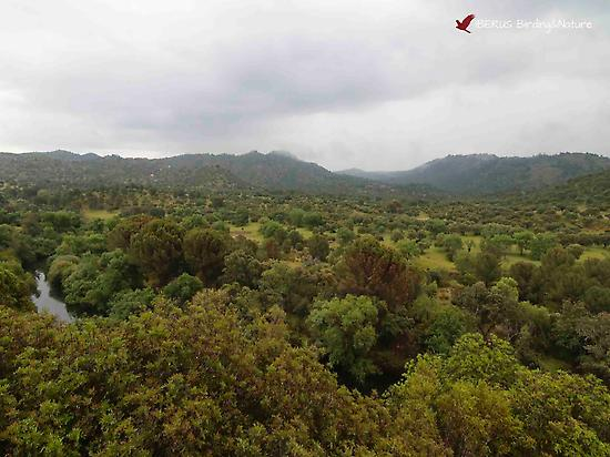Sierra de Andújar Natural Park