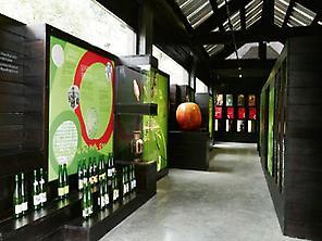 Sagardoetxea (Cider Museum)