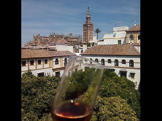 Savour Sevilla
