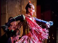 Flamenco al Palau Dalmases