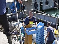 Los Pescadores de la Barceloneta