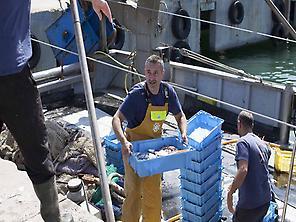 The Fishermen of the Barceloneta