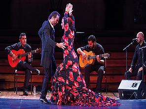 Flamenco Art at the Palau de la Música