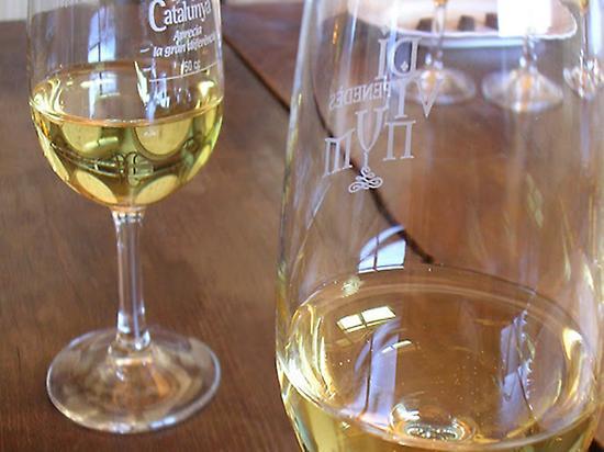 Wine-tasting in Barcelona