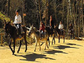 Itinerario con asini catalani