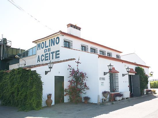 PLANT OF MOLINO DE ZAFRA