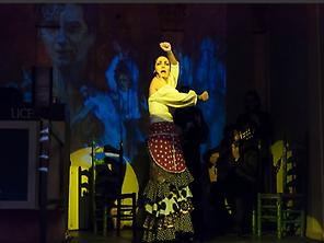 Flamenco Liceo