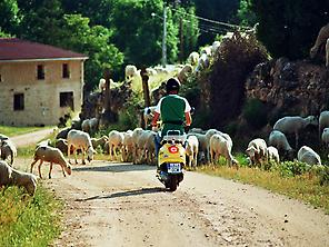Rural adventure on a Vespa