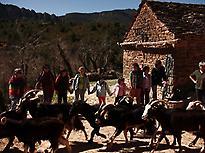 Riorcal Farm