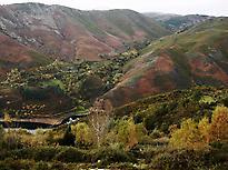 O Xurés, die Grenzwälder