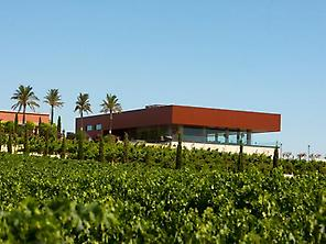 Winery Luis Pérez.