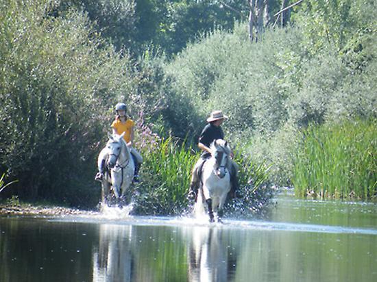 Summer time at Tormes river