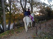 Horse back riding along the riverside