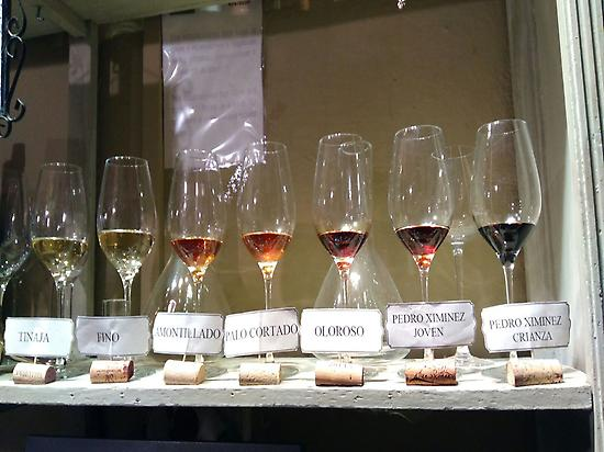 Wines from Montilla-Moriles
