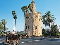 Get to know the Torre del Oro