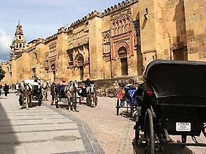 Cordoba and Seville, 3 days from Madrid