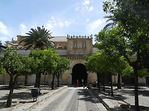 Visit the Mosque of Cordoba