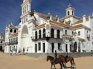 horse-back riding in El Rocio