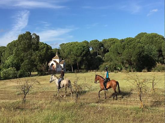 Horse riding in Doñana (Huelva)