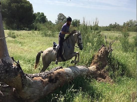Horseback riding in El Rocio (Huelva)