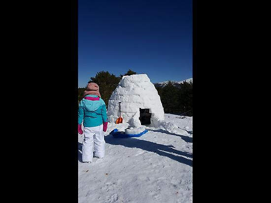 Snow Igloo
