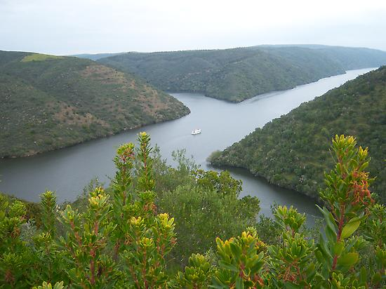 Tagus International Natural Park