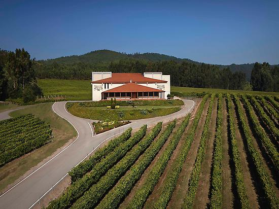 Terras Gauda Winery