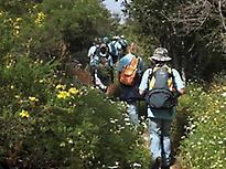 Wandern in Los Alcornocales