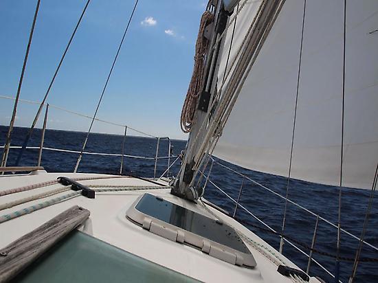 Sailboat trip around the coast of Adeje