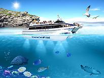 Creuers Mare Nostrum - Bottom Glass Boat
