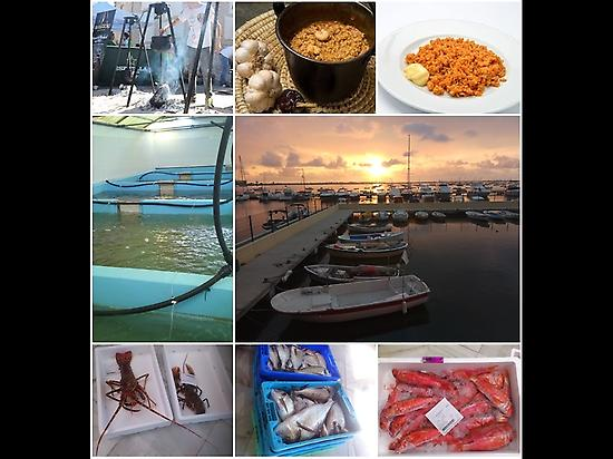 GASTRONOMY AND COATS TOURS SAN PEDRO