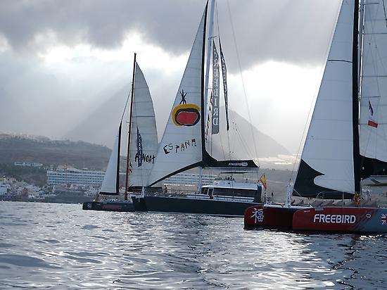 Freebird Catamaran