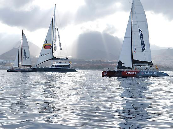 Catamaranes de Freebird