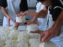 Artisan cheese making in Aracena