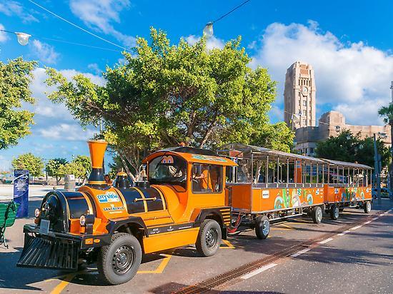 Tourist Train Tenerife City View