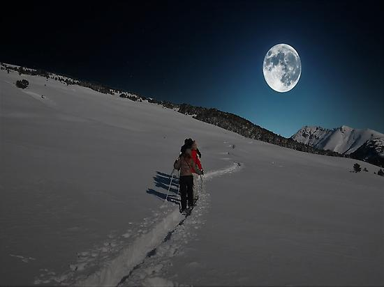 Snowshoeing in the moonlight