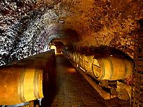 Underground winery in Laguardia