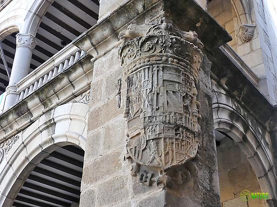 Carlos V coat of arms. Plasencia