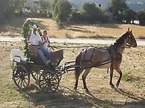 Tout est prêt pour les nouveaux mariés