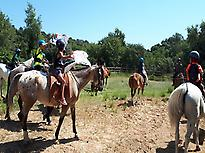 Horseback riding at the end of the activ