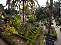 Gardens of the Alcázar