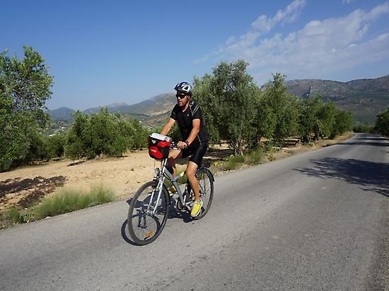 Cyclist crossing an olive grove
